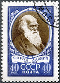 USSR - 1959: shows Charles Darwin (1809-1882), English biologist — Stock Photo