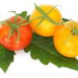 Tomatoes with leaf — Stock Photo