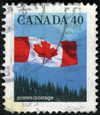 CANADA - 1990: shows image of the Canadian flag — Stock Photo