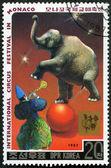 DPR KOREA - 1987: shows clown and elephant — Stock Photo