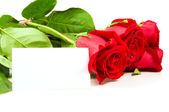 A bunch of roses with a blank card for congratulations. — Stock Photo
