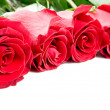 Stock Photo: Beautiful Roses Border