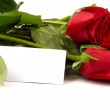 Stock Photo: Bunch of roses with blank card