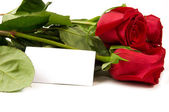 A bunch of roses with a blank card — Stock Photo