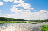 River and summer nature — Stock Photo