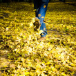 Stock Photo: Feet walking through brightly colored fall leaves on ground.
