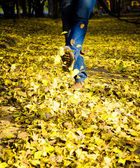Feet walking through brightly colored fall leaves on the ground. — Stock Photo