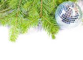 Ramas del pino y bola de navidad aislado — Foto de Stock