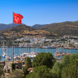 View of Bodrum castle St. Peter, Turkey — Stock Photo #8113670