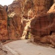 The Siq - ancient canyon in Petra, Jordan — Stock Photo #9689823