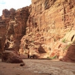 The Siq - ancient canyon in Petra, Jordan — Stock Photo #9689879