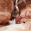 Stock Photo: Horse carriage in Siq canyon, Petra, Jordan.