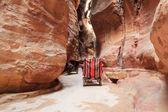 Horse carriage in Siq canyon, Petra, Jordan. — Stock Photo