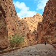 The Siq - ancient canyon in Petra, Jordan — Stock Photo