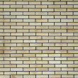 Stock Photo: Texture bricklaying