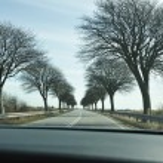 Scenic road in Denmark — Stock Photo
