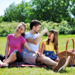 Family on picnic — Stockfoto #10358619