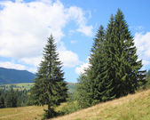 Гора — Стоковое фото