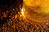 Beer and ingredients — Stock Photo