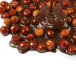 Hazelnut chocolate - Stock Photo