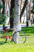 Bike bicycle in the park — Stock Photo