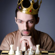 Chess player playing his game — Foto de stock #10322242