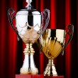Prize cup against the background — Stock Photo #10322591
