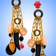 Jewellery concept with nice earrings — Foto de Stock