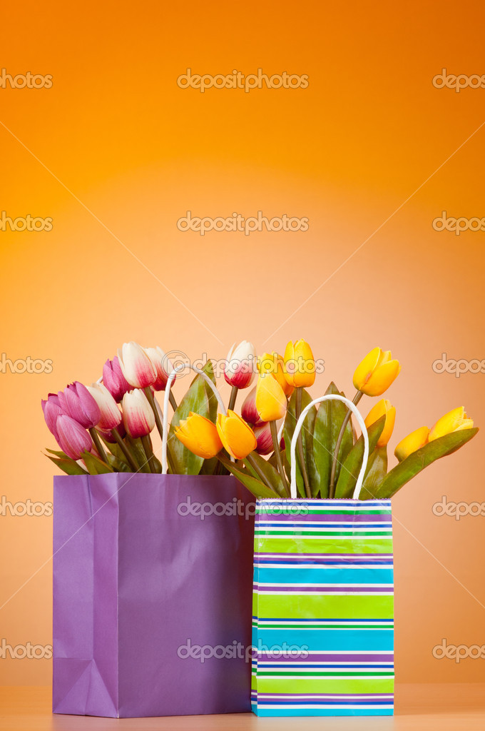 Tulips in the bag against gradient background — Stock Photo #7968831
