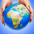 Hand holding globe against gradient — Stockfoto #8863758