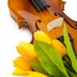 Violin and tulip flowers on white - Stock Photo
