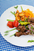 Plate with tasty lamp kebabs — Photo
