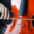 Stock Photo: Mplaying cello