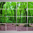 Photo cut into pieces with nature concept — Stock Photo