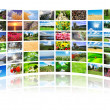 Collage of many nature photos — Stock Photo #9699894