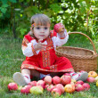 Little girl collects the apples scattered on a grass in a basket — Stock Photo