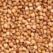 Buckwheat — Stock Photo #8519635