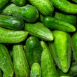 Cucumbers — Stock Photo #8757454