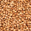 Buckwheat — Stock Photo #9097635