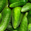 Cucumbers — Stock Photo #9449593