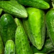 Cucumbers — Stock Photo #9566759