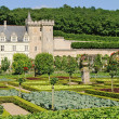Villandry — Stock Photo #9567034