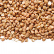 Buckwheat — Stock Photo #9813278