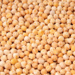 Yellow pea — Stockfoto #9813288