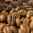 Coffee beans — Stock Photo #9547179