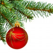 Christmas tree — Stock Photo #9548637