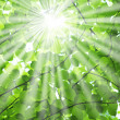 Sun beams — Stockfoto