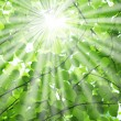 Stock Photo: sun beams
