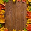 Autumn background — Foto de stock #9549925