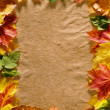 Autumn background — Stock Photo #9549976